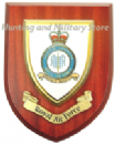 RAF Royal Air Force Fighter Command Regimental Military Wall Plaque